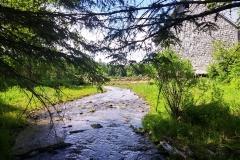 Creek beside Farm